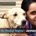 Standing for Animal Rights