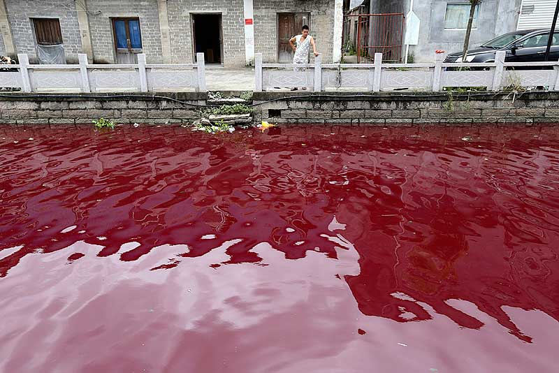 River-Pollution-China-Earth5r
