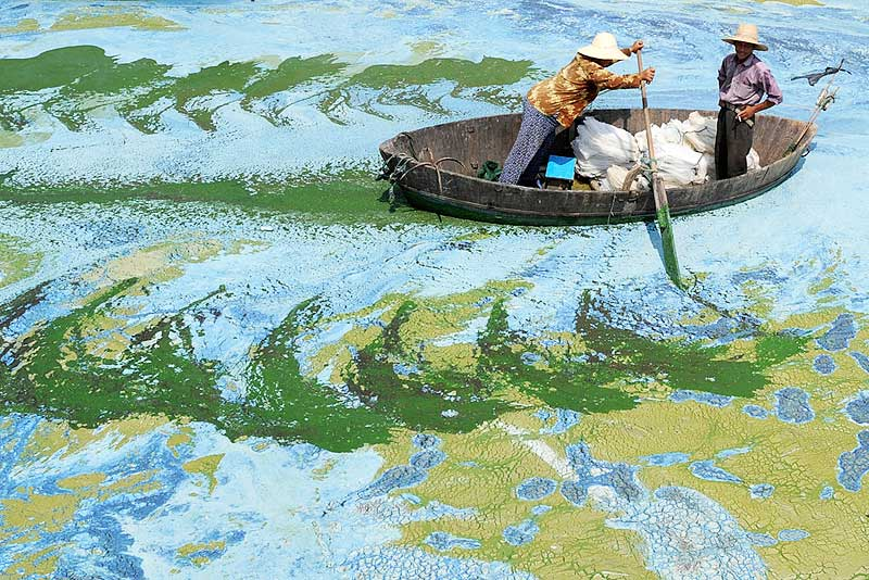 Water-Pollution-China-Earth5R