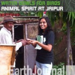 Water bowls for birds: Animal spirit by Jaipur Earth5R