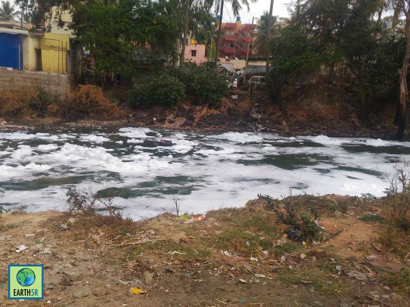 Bellandur Lake Fire Bangalore Earth5R Cleanup CSR 10