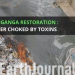 Damanganga Restoration: The river choked by toxins