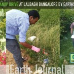 Clean-up at Lal Bagh Bangalore by Earth5R