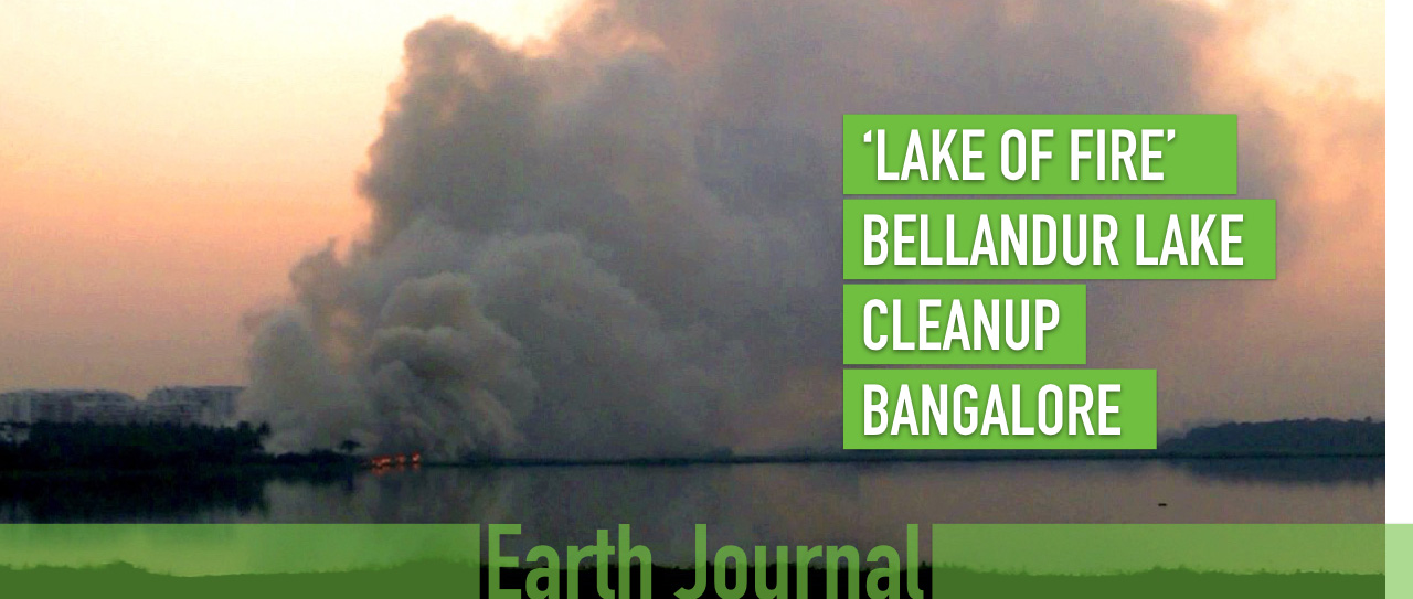 Bellandur Lake Fire Bangalore Earth5R Cleanup