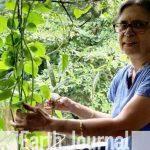 Sudha Bhujle- Environmentalist of the week