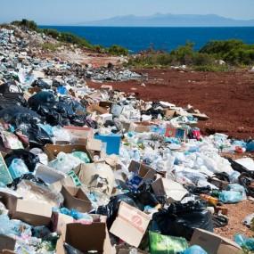 Waste Management Mumbai India Environmental NGO Earth5R