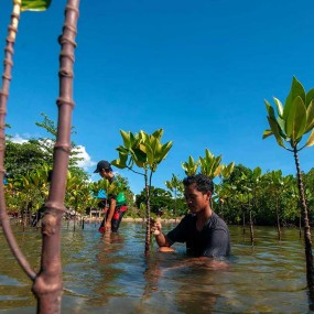 Plantation-Mumbai-India-Environmental-NGO-Earth5R