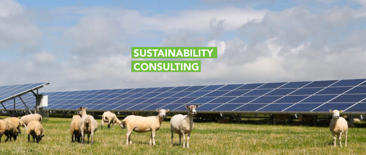 Sustainability-Consulting-Earth5R