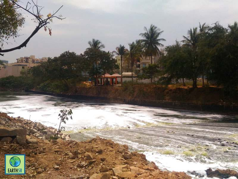 Bangalore Lake Cleanup Mumbai India Environmental NGO Earth5R