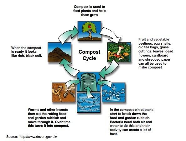 Compost Cycle Mumbai India Environmental NGO Earth5R