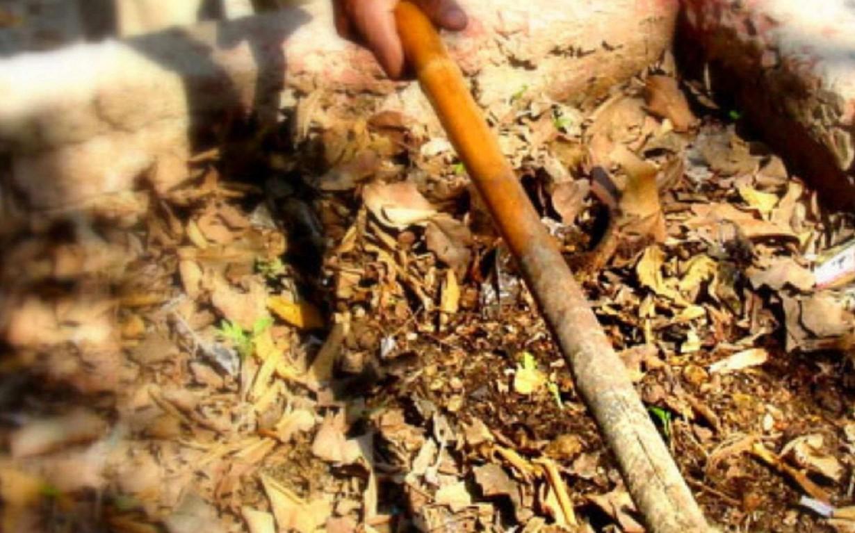 Composting Mumbai India Environmental NGO Earth5R