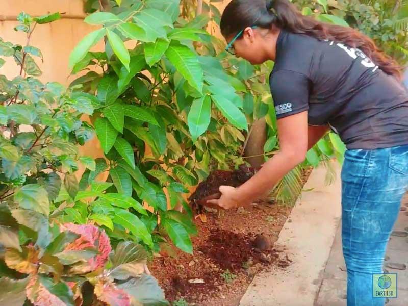 Composting Units Gardening Mumbai India Environmental NGO Earth5R