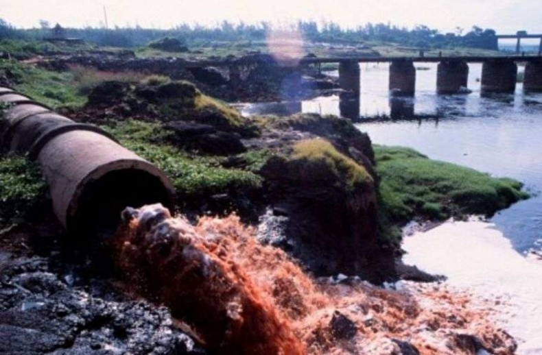 Damanganga River Daman Vapi Pollution CSR Mumbai India Environmental NGO Earth5R