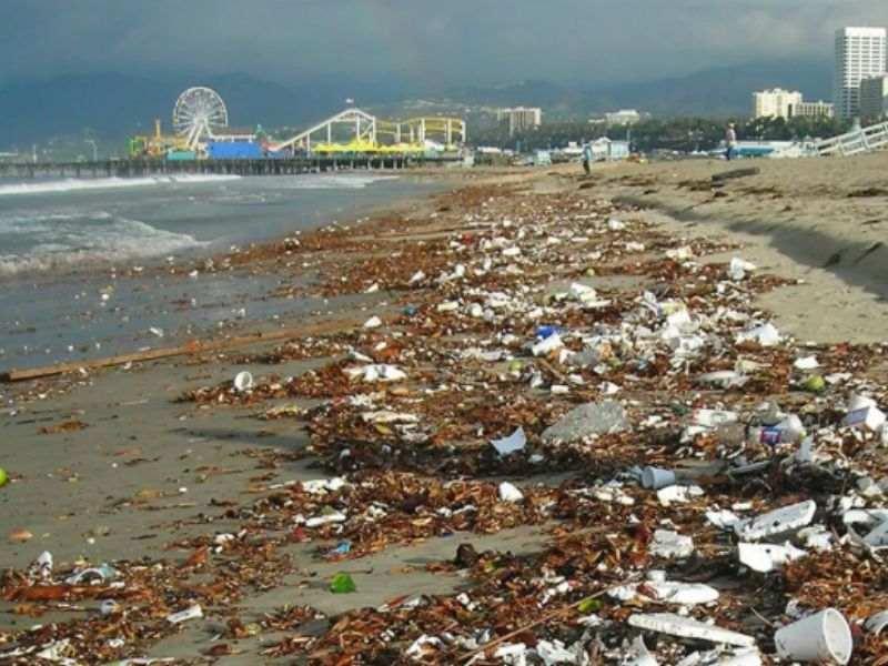 Los Angeles Waste Management Circular Economy Mumbai India Environmental NGO Earth5R