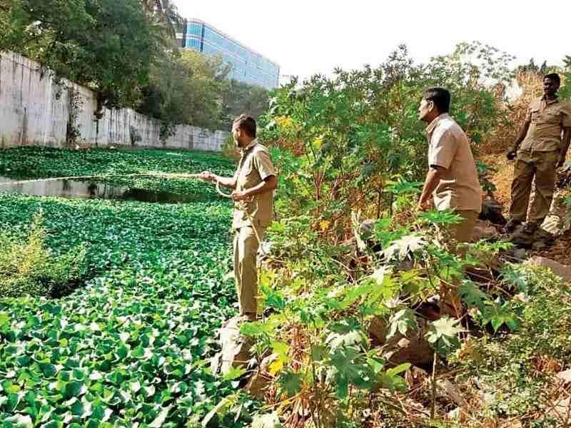 Mithi River Waste Pollution Mumbai India Environmental NGO Earth5R