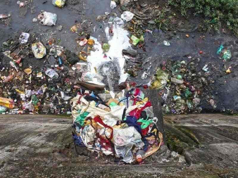 Mumbai India Environmental NGO Earth5r environmental education mithi river pollution