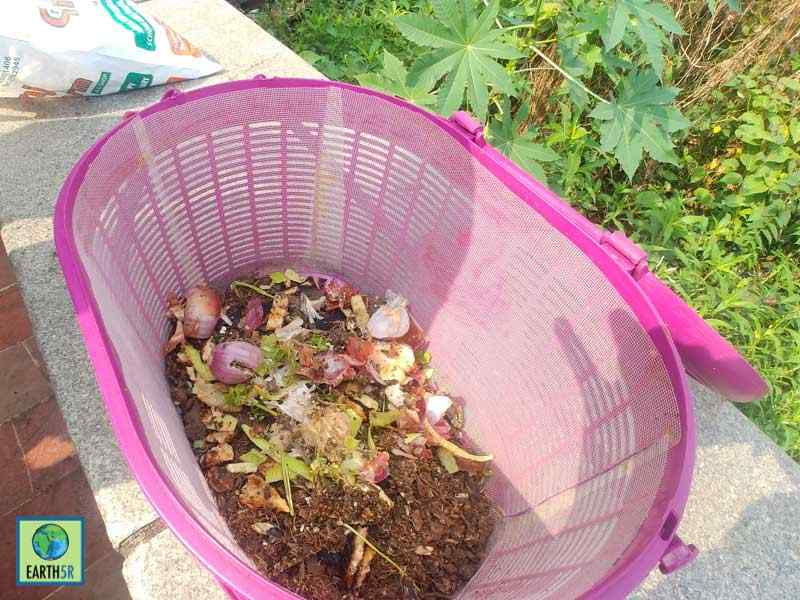 Organic Waste Awareness Mumbai India Environmental NGO Earth5R