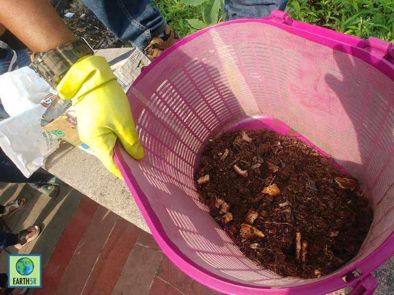 Organic Waste Management Mumbai India Environmental NGO Earth5R