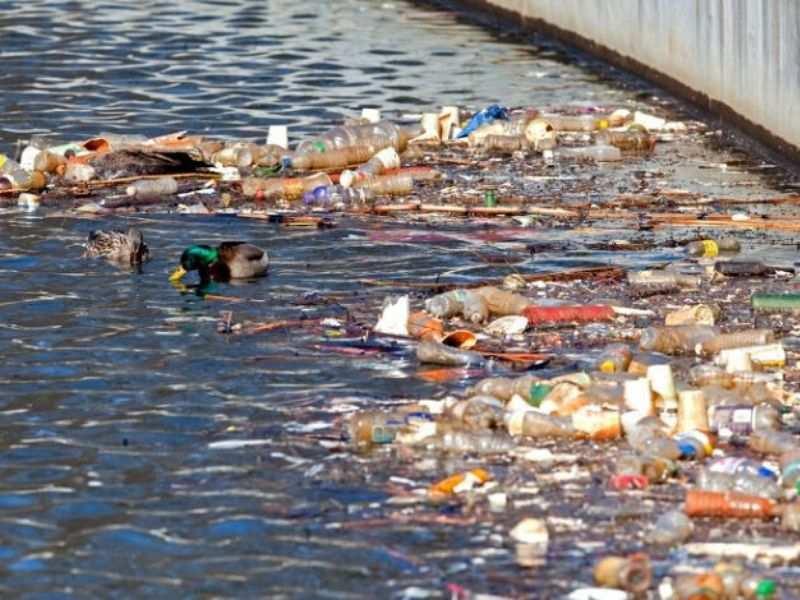 Oswego Plastic Circular Economy Mumbai India Environmental NGO Earth5R