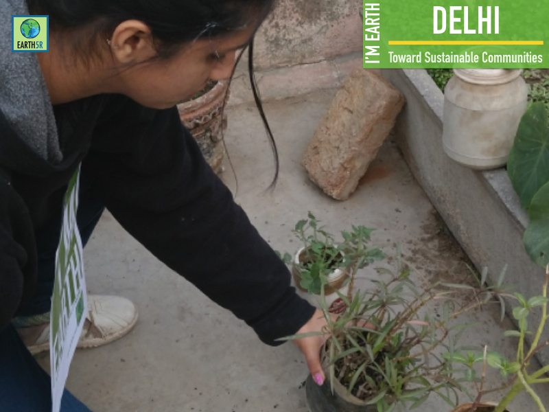 Plantation Community Development Delhi Mumbai India Environmental NGO Earth5R