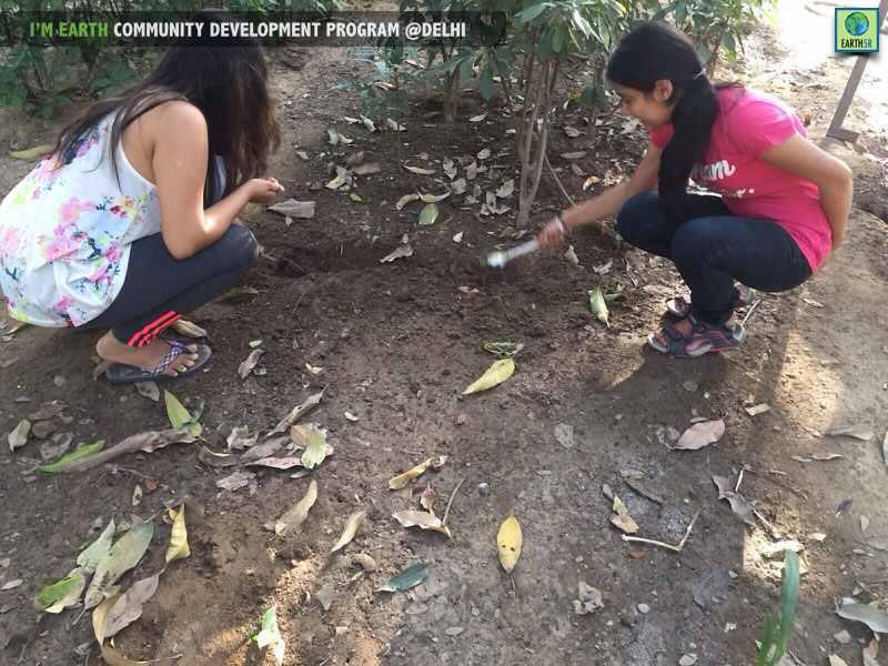 Plantation Delhi Volunteers Earth5R Mumbai India Environmental NGO