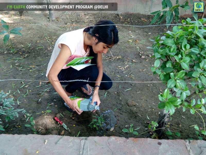 Plantation Drive Delhi Volunteer Earth5R Mumbai India Environmental NGO