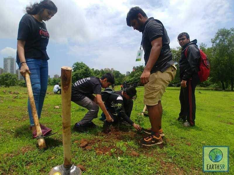 Plantation Drive Mumbai India Environmental NGO Earth5R