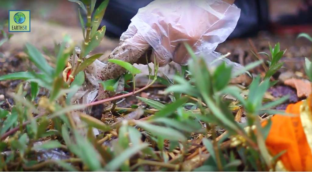 Plantation Drive Volunteer Mumbai India Environmental NGO CSR Earth5R
