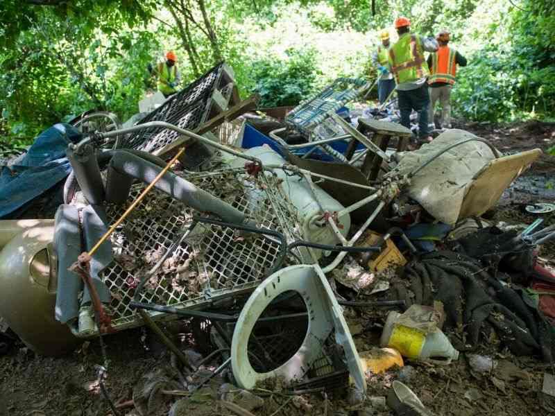 Sacramento River California Pollution Sewage Mumbai India Environmental NGO Earth5R