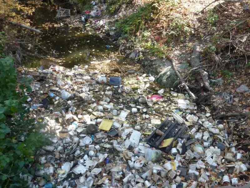 San Jose Plastic Circular Economy Mumbai India Environmental NGO Earth5R