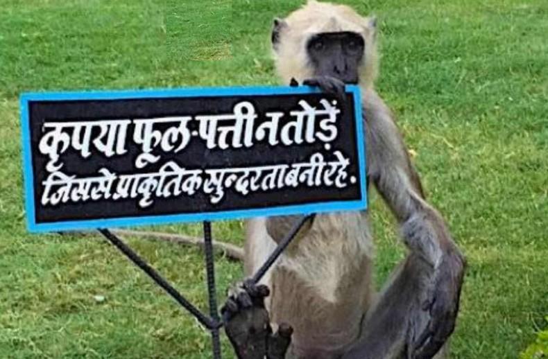 Sustainable Development Varanasi Earth5R Mumbai India Environmental NGO