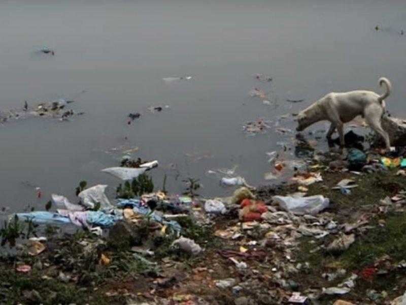 Sutlej Waste Awareness Circular Economy Mumbai India Environmental NGO Earth5R