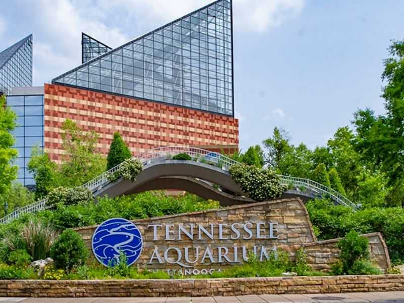 Tennessee Circular Economy Mumbai India Environmental NGO Earth5R