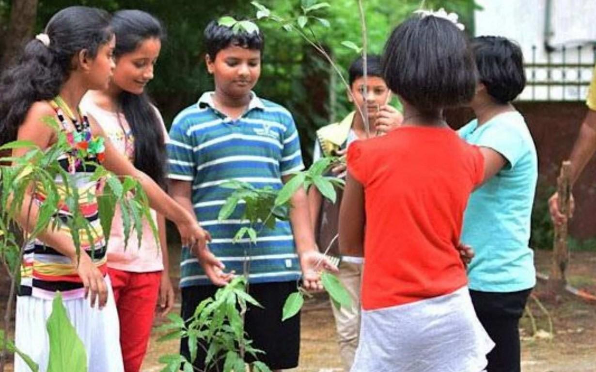 Tree Plantation Bilaspur Mumbai India Environmental NGO Earth5R