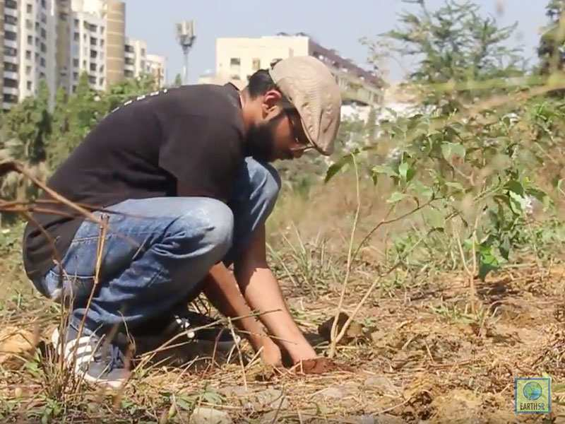 Tree Plantation Volunteers Mumbai Environmental Organisation Earth5R