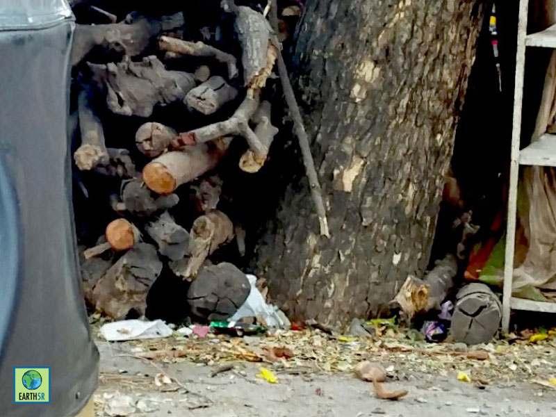 Women Empowerement Sonam Sengar Volunteer Mumbai India Environmental NGO Earth5R