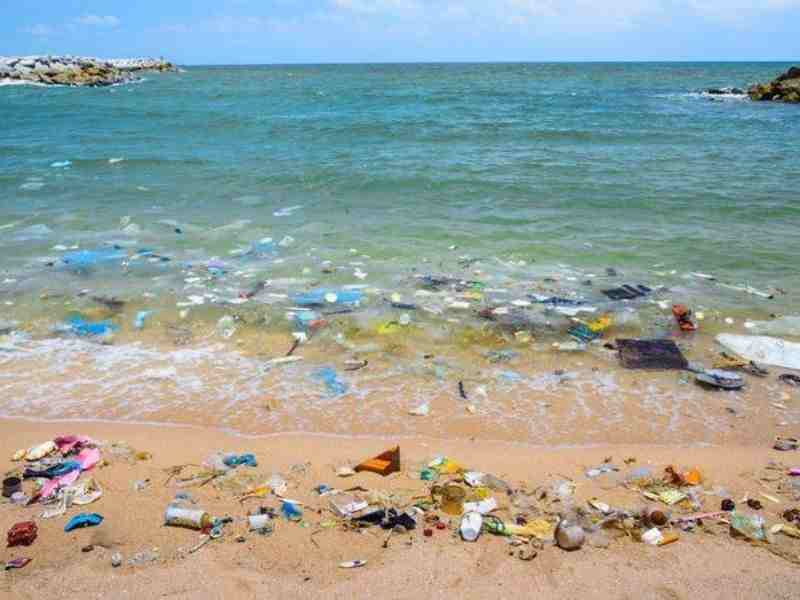 Barcelona Circular Economy Plastic Pollution Beach Mumbai India Environmental NGO Earth5R