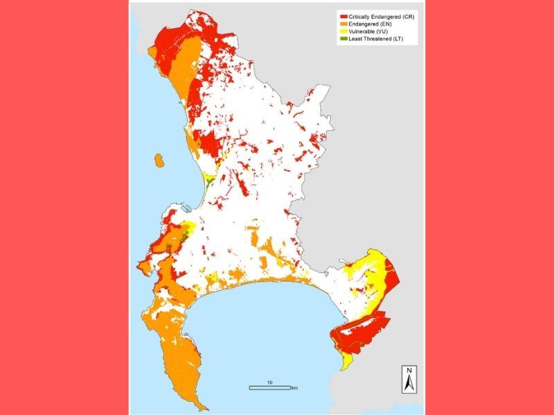 Cape Town Circular Economy biodiversity Map Mumbai India Environmental NGO Earth5R