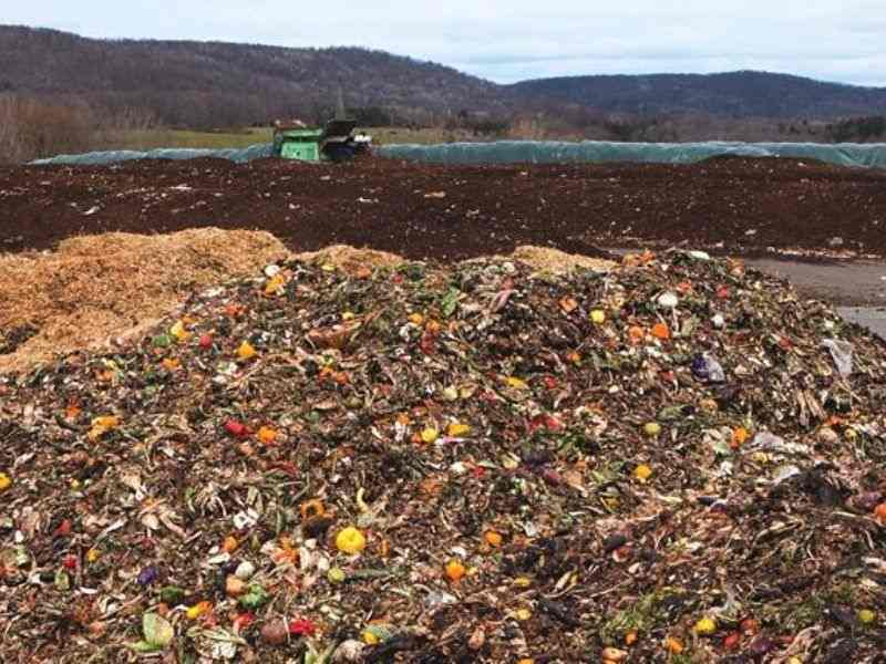 Food waste New York City Circular Economy Mumbai India Environmental NGO Earth5R