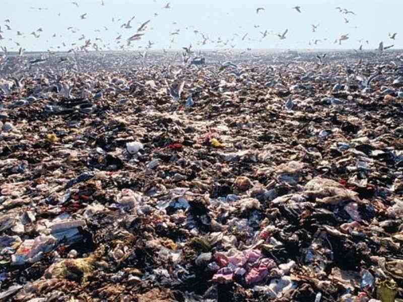 Landfill New York City Circular Economy Mumbai India Environmental NGO Earth5R