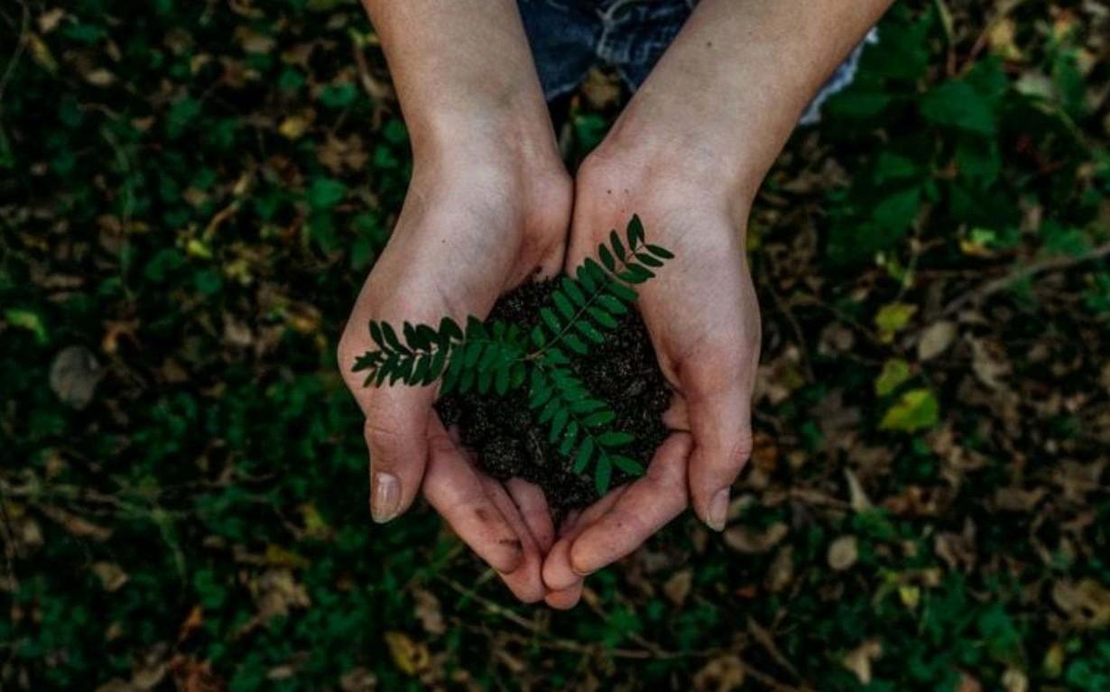 Mumbai-India-Environmental-NGO-Earth5R-UN-SDG