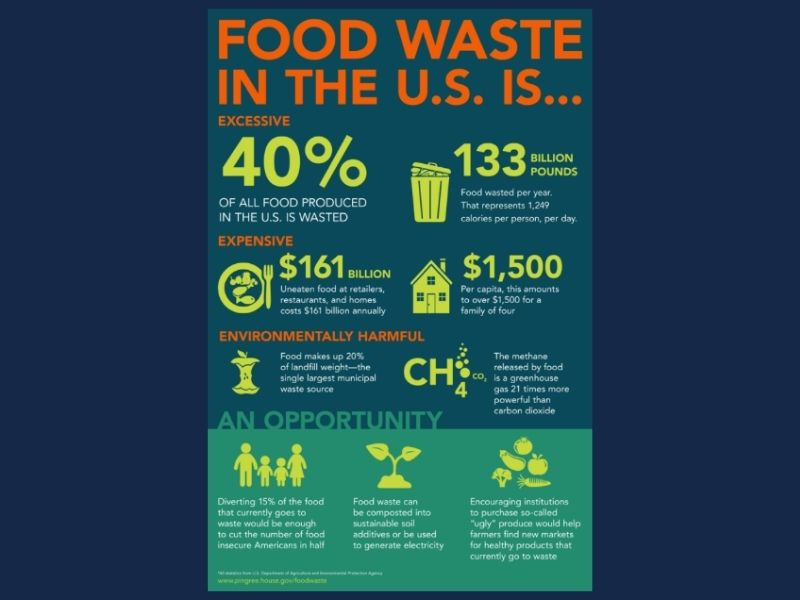 USA Environmental Education food wastage problems Mumbai India Environmental NGO Earth5R