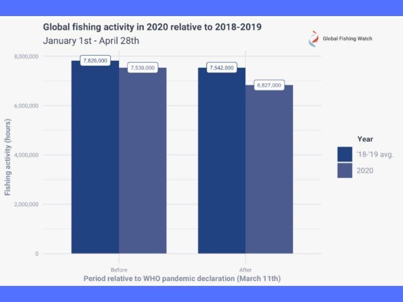 Impacts of covid19 on environment marine life fishing impacts Mumbai India Environmental NGO Earth5R