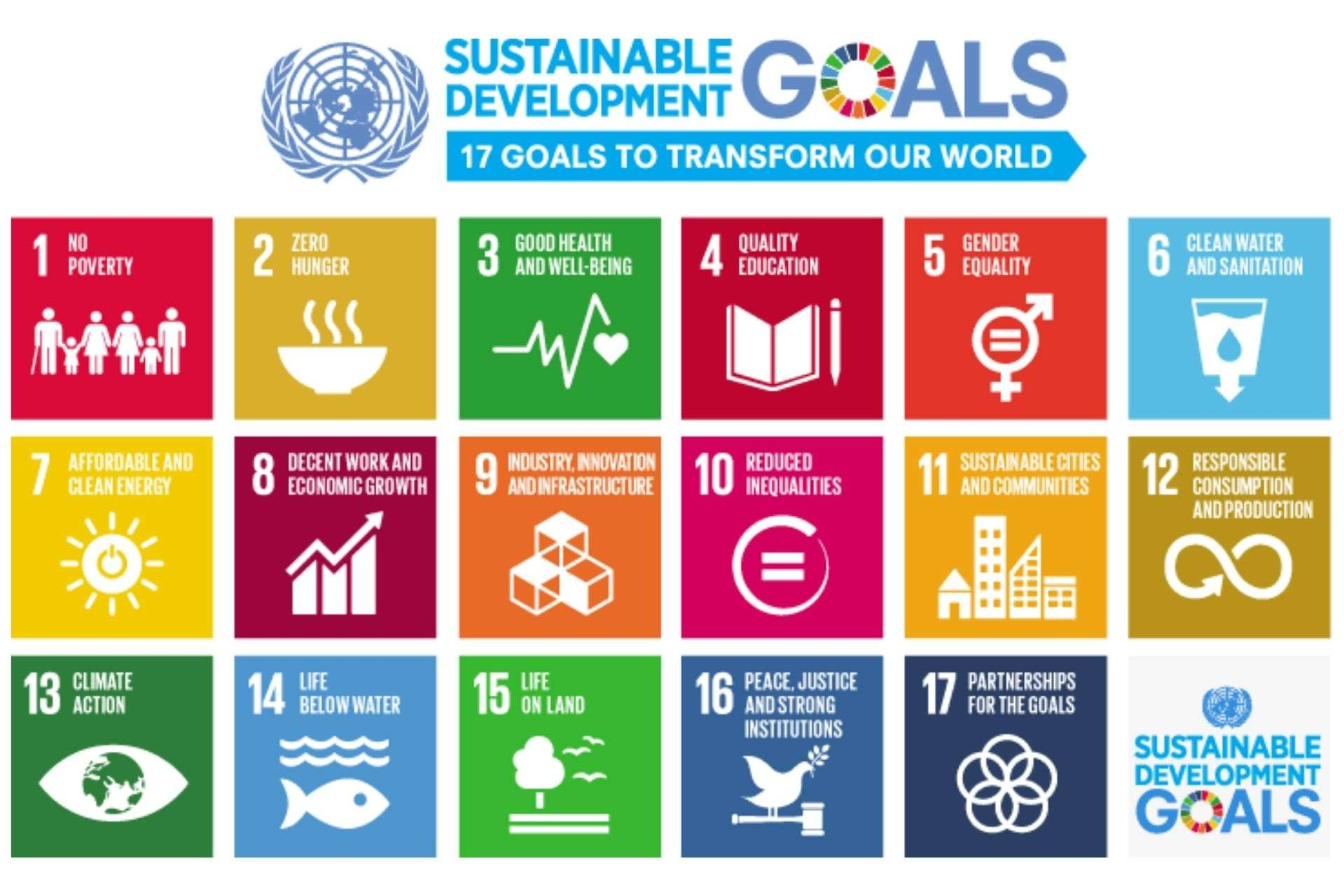 Mumbai-India-Environmental-NGO-Earth5r-Circular-Economy-SDGs