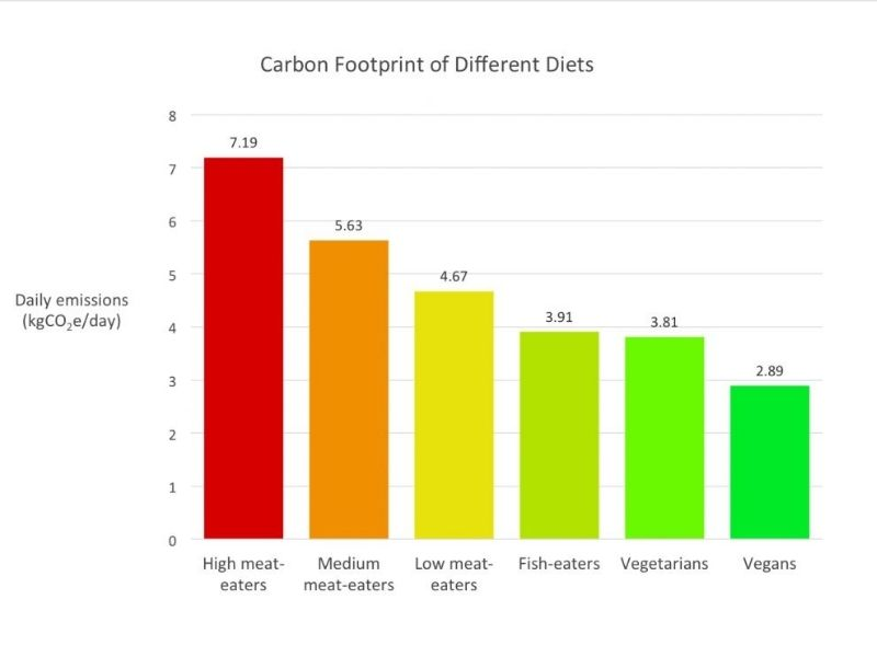 Mumbai-India-Environmental-NGO-Earth5r-Circular-Economy-graph