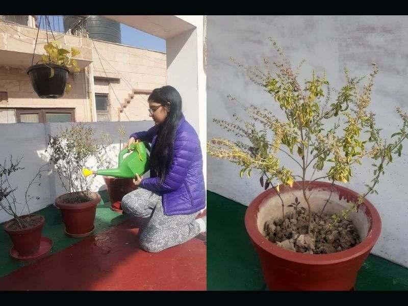 Mumbai-India-Environmental-NGO-Earth5r-Circular-Economy-gardening-climate