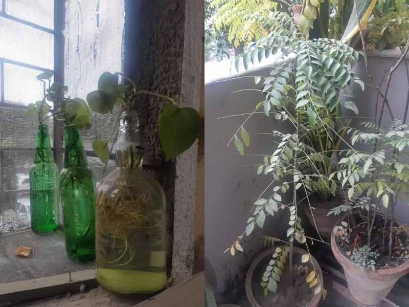 Mumbai-India-Environmental-NGO-Earth5r-Circular-Economy-plant