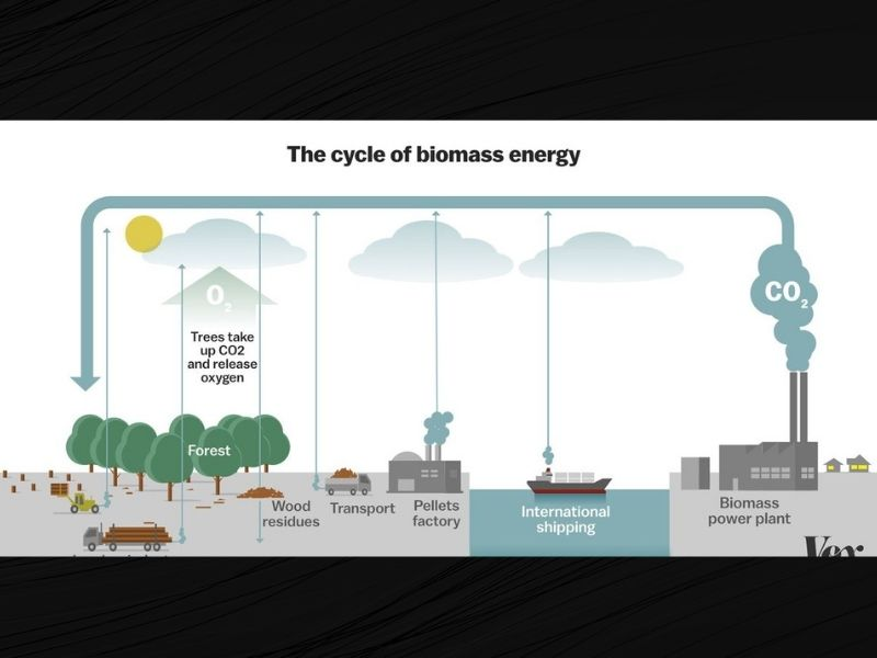 Mumbai-India-Environmental-NGO-Earth5R-Circular-Economy-biomass-energy