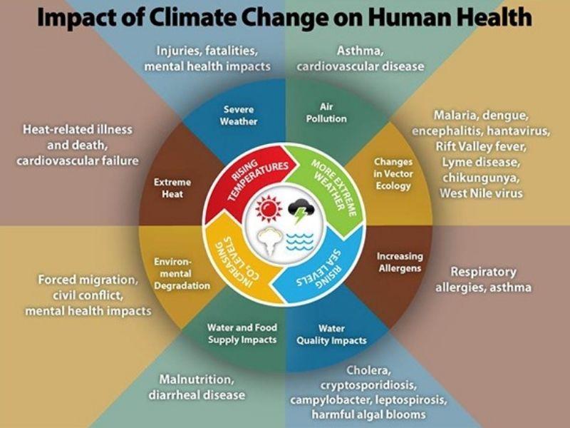 Mumbai-India-Environmental-NGO-Earth5R-Circular-Economy-climate-change