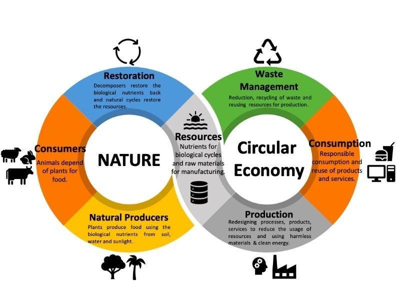 Mumbai-India-Environmental-NGO-Earth5R-Circular-Economy